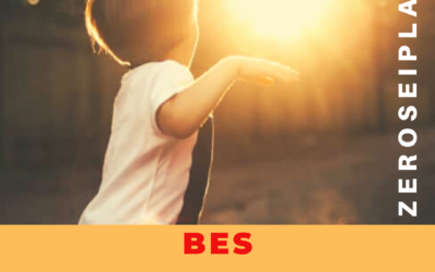 BES: I BISOGNI EDUCATIVI SPECIALI